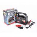 Зарядное устройство ALLIGATOR AC801